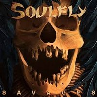 soulfly 200